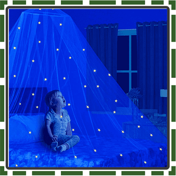 Best Glow Bed Canopy