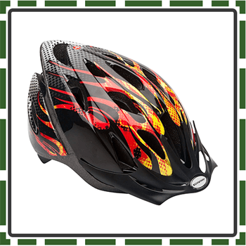 Best Schwin Bike Helmets for Toddlers and Kids