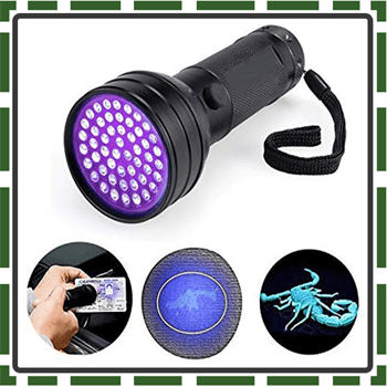 Best NVTED Flashlights for Toddlers