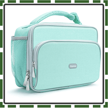 Best Amersun Lunch Boxes for Kids